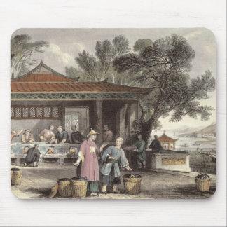 Kulturen och förberedelsen av Tea, från 'china in Musmatta