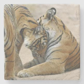 Kunglig Bengal tiger och barn en - som är rörs Underlägg Sten