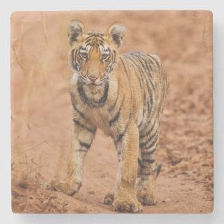 Kunglig Bengal tigerunge på flyttningen Underlägg Sten