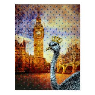 Kunglig Ostrich i London Vykort