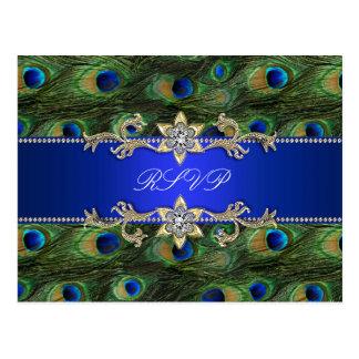 Kunglig vykort för blåttpåfågelOSA