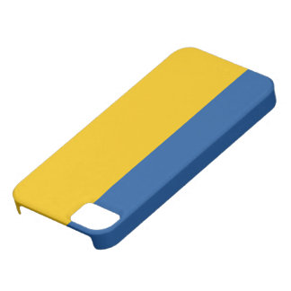 Kungligt blått- och guldfodral iPhone 5 fodraler