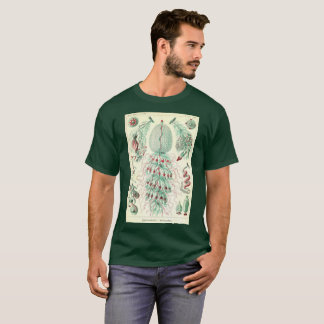kunstf för vintageT-tröjaSiphonophorae ernst Tee
