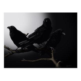 Kusliga Ravens i månskenvykortet Vykort