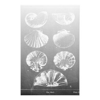 kust- franska botaniska svart tavlasnäckskal för brevpapper