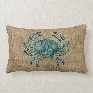 Green Crab Illustration Sealife Map Coastal