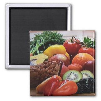 Kvadrera fruktnöt och grönsakmagneten magnet