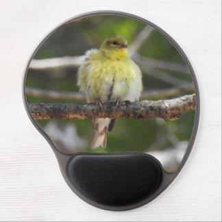 Kvinnlig fågel för fluffig gul amerikansteglits gel musmatta