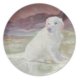 Kyla av den Labrador retrieveren Tallrik