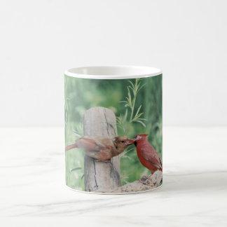 Kyssande kardinaler kaffemugg