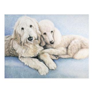 Labradoodle och standard vykort för pudelhundkonst