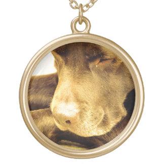 Labrador hänge guldpläterat halsband