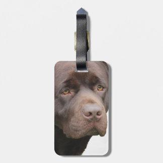 Labrador Retriever Bagagebricka