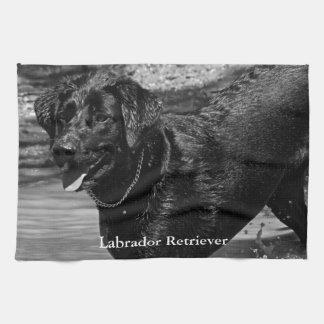 Labrador Retriever i vatten Kökshandduk