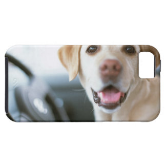 Labrador Retriever iPhone 5 Case-Mate Skydd