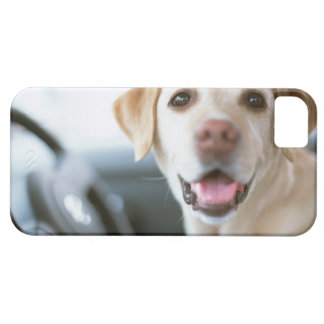 Labrador Retriever iPhone 5 Cover