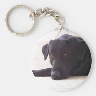 labrador retriever rund nyckelring