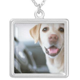Labrador Retriever Silverpläterat Halsband
