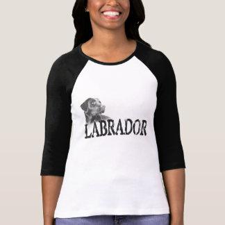 Labrador Retriever Tröjor