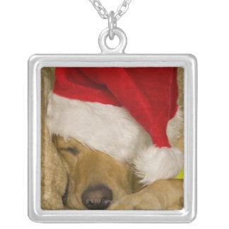 Labrador som ha på sig en röd helgdagSanta hatt Silverpläterat Halsband