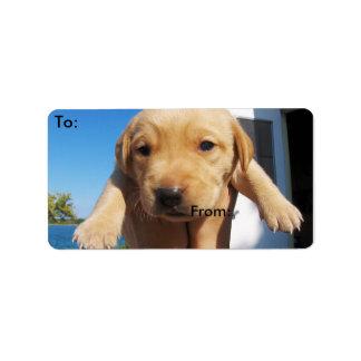 Labrador valp - bra morgon! adressetikett