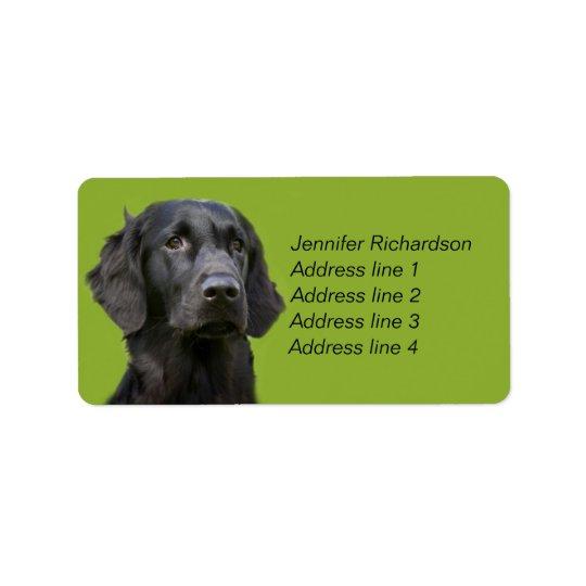 Lägenhet jackad Retrieverhund, svart Adressetikett