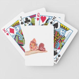 Lägenheten räcker visning modellerar människanjure spelkort