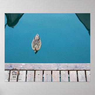 lago poster