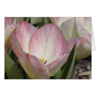 Lagrar av blommor hälsningskort