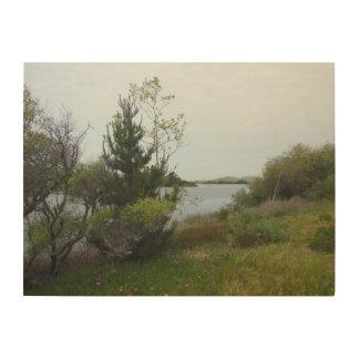 Laguna sjö, San Luis Obispo, full Wood väggkonst Trätavla