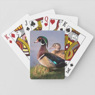 Lakeside Wood anka Casinokort