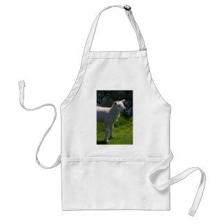 Lamb Förkläde