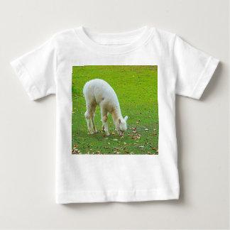 lamb tee shirt
