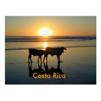 Land för vykortBejuco ko, Costa Rica Vykort