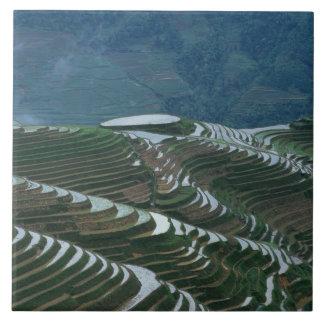 Landskap av risterrasser i berg, 2 kakelplatta