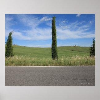 Landskap med Cypresses Posters