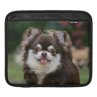 Lång Haired ChihuahuaHeadshot 1 Sleeve För iPads
