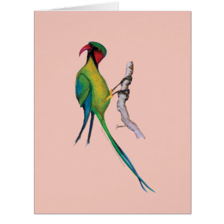 lång-tailed parakiter, tony fernandes jumbo kort