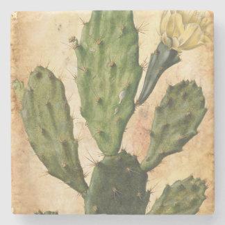 lantlig vintage för kaktus stenunderlägg