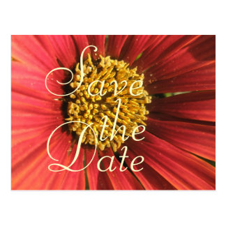 Lantligt rött bröllop vykort