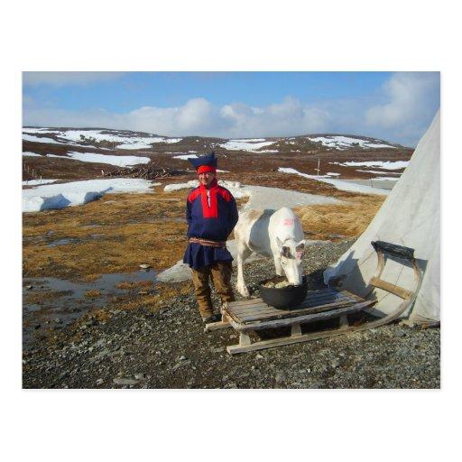 Lapland Sámi bosättning med tält och kon Vykort