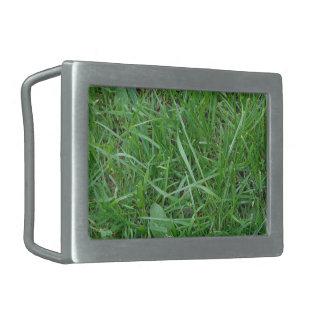 Lappa av gräs