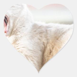 Larry Hjärtformat Klistermärke