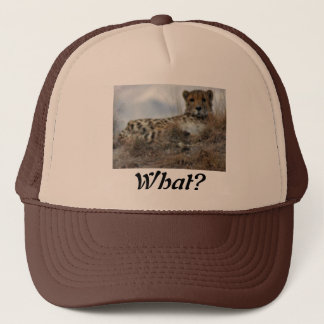 lat cheeta, vad? truckerkeps