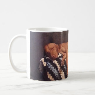 Lata Vizsla som behöver kaffe Kaffemugg