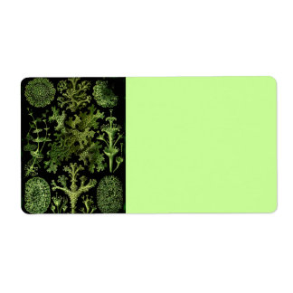 Lavar i grönt och svart fraktsedel