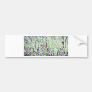 Lavendel bedövar bildekal