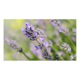 LavendelFlowers. Set Av Standard Visitkort