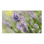 LavendelFlowers. Visit Kort