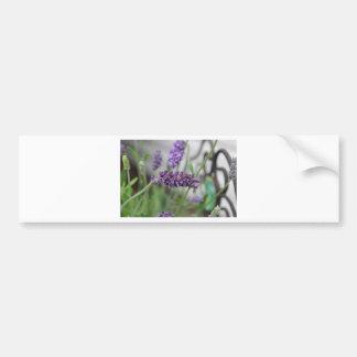 Lavendeljärn Bildekal